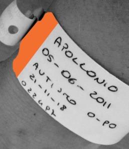 braccialetto arancio